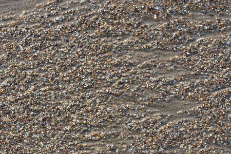 be wet: Wet sand and small stones on the beach closeup. It can be used as a background.