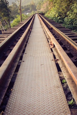 Railroad tracks through a forest and countryside, Thailand. photo