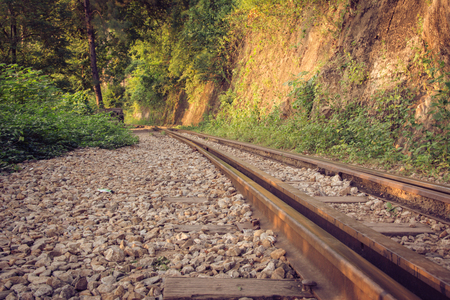 forest railroad: Railroad tracks through a forest and countryside, Thailand.