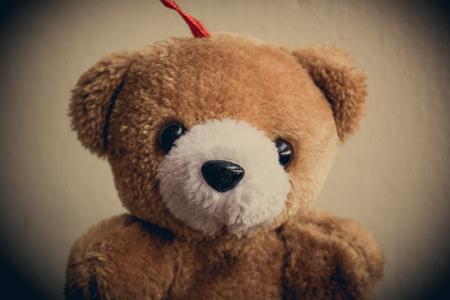 bear doll: Brown bear doll vintage.