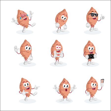 All set Yam mascot and background with flat design style for your mascot branding.