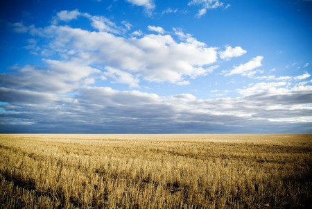 droughts: Wheat fields in rural Australia after harvest.