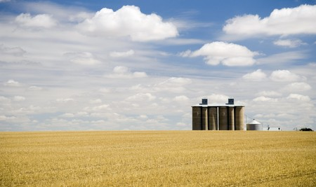 droughts: Harvested field with grain silo and fluffy white clouds