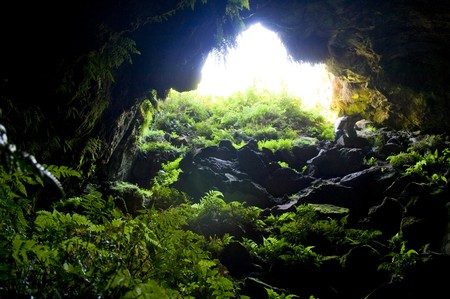 cavern: Entrance to natural caves with lush greenery