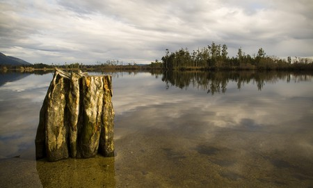 Still reflective waters with old tree stump and forest island Stock Photo - 6950171
