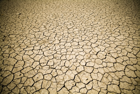 lifeless: Badly cracked earth under a scorching sun