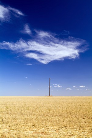 power pole: Wheat fields in country Australia with a single power pole and cloud Stock Photo
