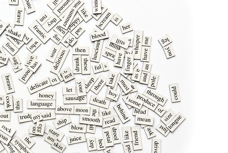 verb: Random collection of  different words and word-forms on magnetic tiles