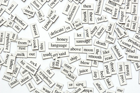 Random collection of  different words and word-forms on magnetic tiles photo