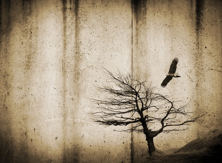 emo: Grunge style textures with stains and tree and bird