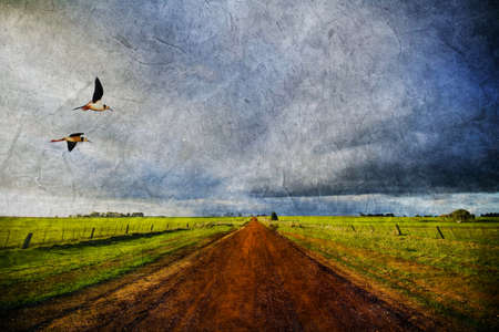 Country road with birds on distressed paper photo