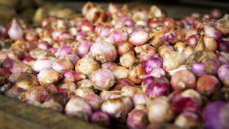 Beautiful fresh garlic on sale at a market stall Stock Photo - 10042924