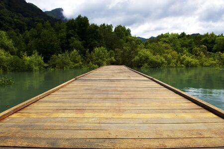 endlos: Ein Holzsteg geht aus endlos in den Wald