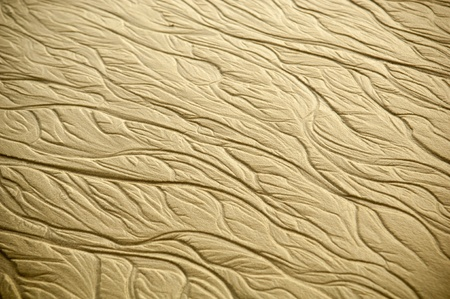 Intricate patterns form in the sand