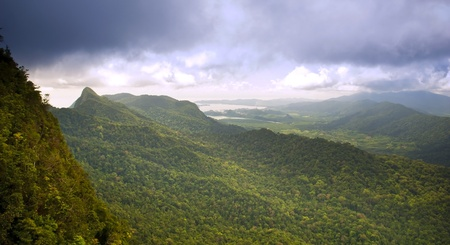 manchinchang: Spectacular jungle landscape with mountain range