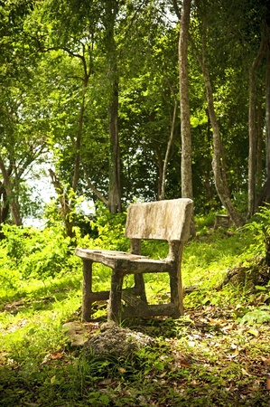 langkawi island: An empty seat in a fantasy forest Stock Photo