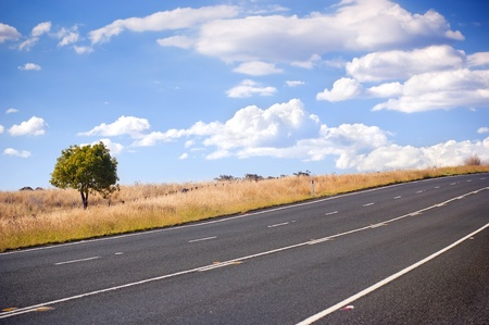 single lane road: Sealed road in the country with fields and a tree under blue sky