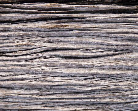 drifts: Detail of drift wood as background texture