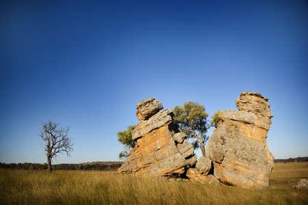 seemingly: Two rocks seemingly split apart by a tree Stock Photo