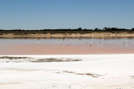 hot climate: Salt lake, evidence of drought in rural Australia Stock Photo