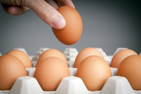 Person choosing the best egg from a carton of eggs photo