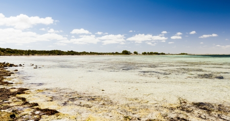 yorke: Clear tropical looking water with horizon and blue sky