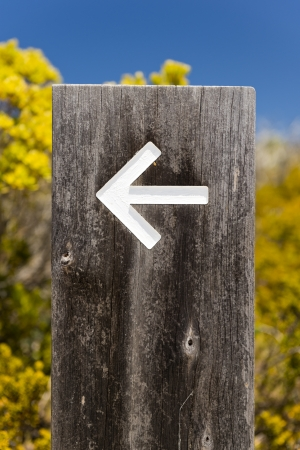 yorke: Arrow signs outside pointing the way on a walking trail
