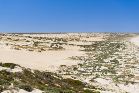 yorke: Sand dunes stretch into the distance along the coast Stock Photo