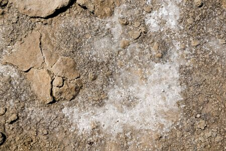 yorke: Crystal salt forming on drought affected ground