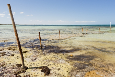 yorke: Rusting metal poles stick out of the ocean with blue sky behind Stock Photo