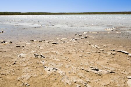 mire: A lake in the process of becoming a salt lake