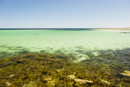 yorke: Crystal clear waters with amazing colors along the rocky coast