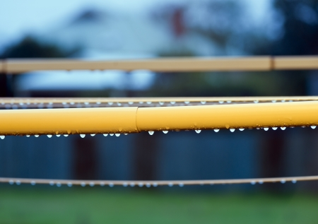 Rain drops cling to the underside of a clothes line photo