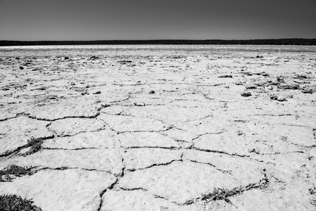 yorke: Earth badly cracked and broken under a hot sky in stunning black and white
