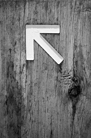 sign post: Arrow signs outside pointing the way on a walking trail in stunning black and white
