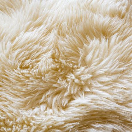 Lussuoso tessitura di lana da un tappeto di pelle di pecora bianca Archivio Fotografico