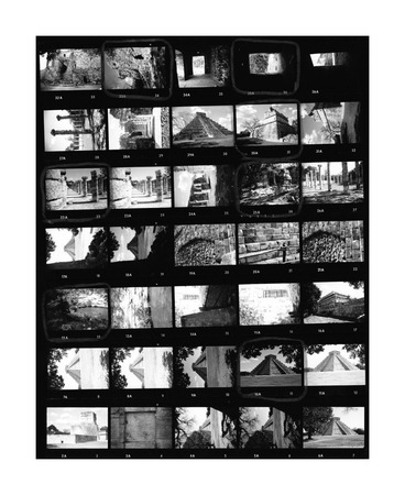 contact sheet: Contact sheet of old black and white film negatives on traditional photo paper