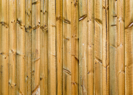 treated: New wood fence in treated pine panels Stock Photo