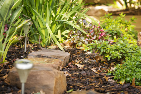 Landscaping design in a garden with rocks, solar lights and plants