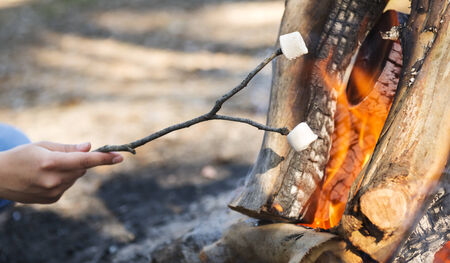 Person roasting marshmallows on a stick over a campfire while camping photo