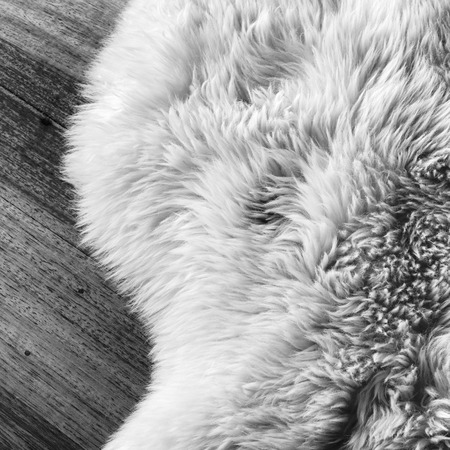 Lambs wool sheepskin on a timber floor in black and white photo