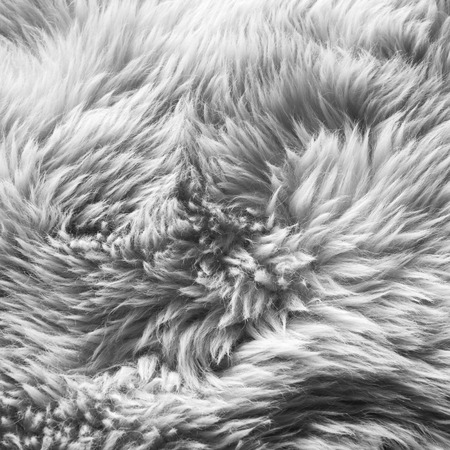 rug texture: Luxurious wool texture from a white sheepskin rug in black and white