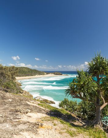tectorius: Pandanus palms and rocky headlands along the Queensland coastline Stock Photo