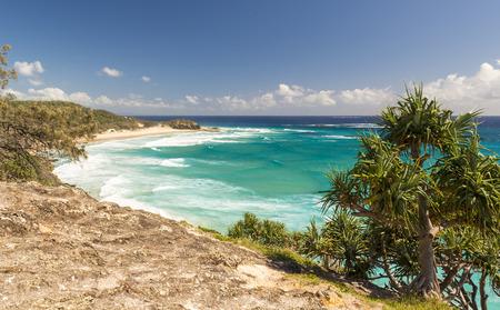 pandanus: Pandanus palms and rocky headlands along the Queensland coastline Stock Photo