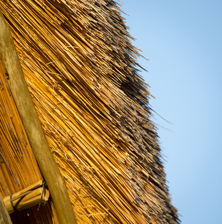 thatched house: Typical thatched roof construction in detail found in Africa Stock Photo