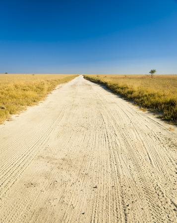 endless: Endless dirt road through the plains of Botswana, Africa at the Makgadikgadi Pan