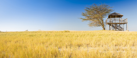 hut: Wooden viewing hut with thatched roof looks out over the Makgadikgadi Pan in Botswana, Africa while on safari Stock Photo