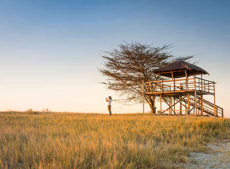 botswana: A young woman stands in long grass and takes photos of sunset while on safari in the Makgadikgadi Pans, Botswana, Africa