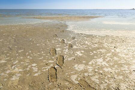 footmark: Makgadikgadi Pan in Botswana, Africa covered in water forms a massive lake