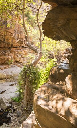 botswana: View along the Moremi Gorge walking trail in Botswana, Africa Stock Photo